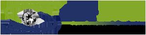logo bg - logo-bg